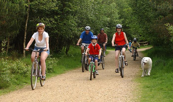 Как правильно выбрать горный велосипед: Велосипеды Кросс-кантри