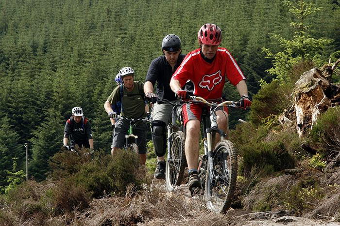 Как правильно выбрать горный велосипед: Горный велосипед (mountain bike)